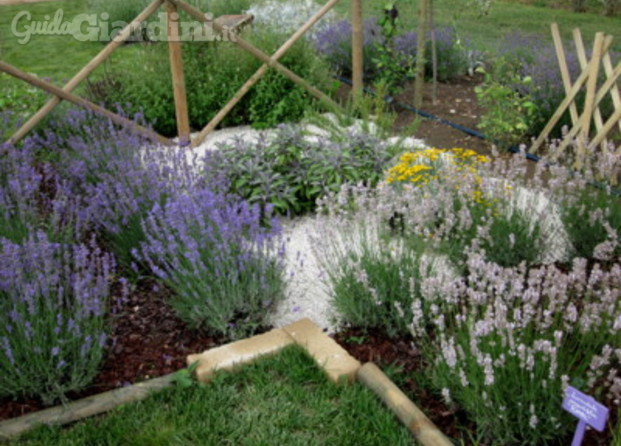 Manutenzione giardini umbria - Manutenzione caldaia umbria ...