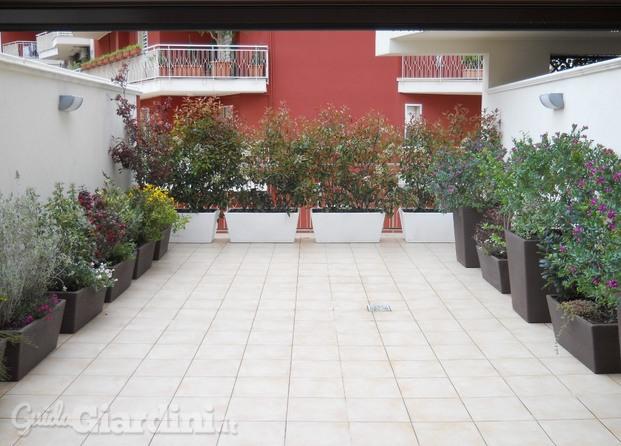 Immagini di vivai pollice verde for Arredo terrazzo outlet