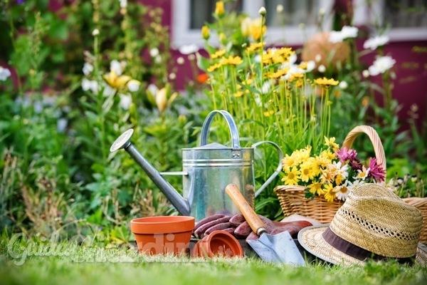 Trattamento post-solare delle piante