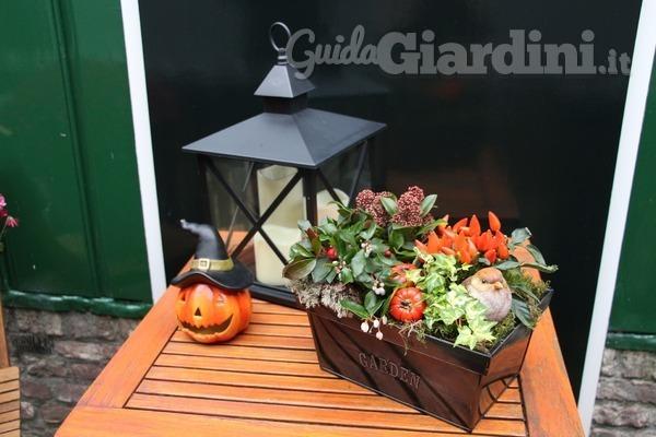 Le decorazioni di Halloween per il tuo giardino
