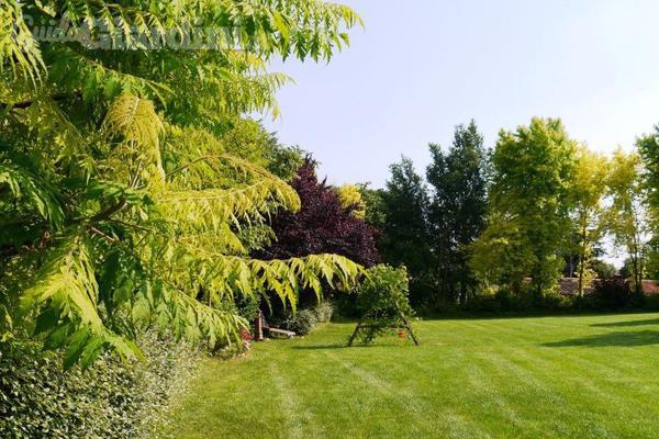 Sognare e realizzare il giardino ideale grazie al for Rendering giardino
