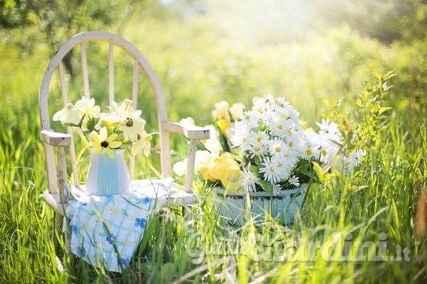 Come curare il giardino durante le ferie?