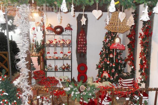 Come decorare con le piante a Natale