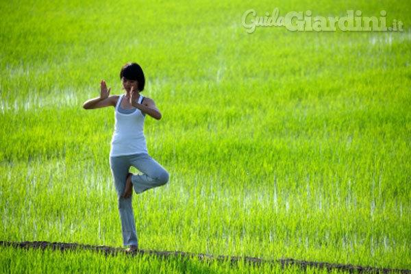 Open Days: Progettare il verde nel benessere