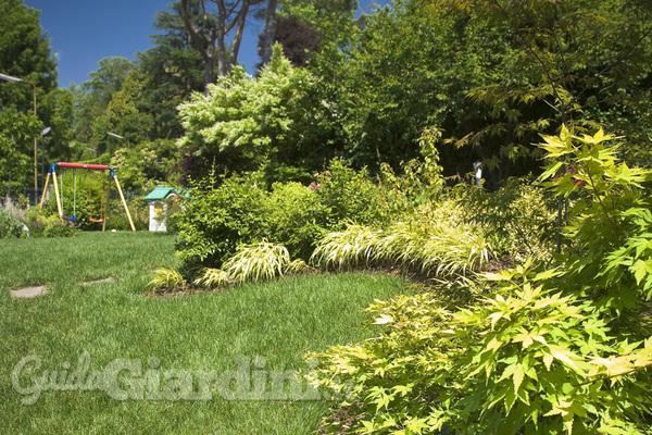 Come sfruttare la vegetazione spontanea del giardino
