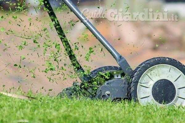 Le differenze tra prato a rotoli ed erba sintetica