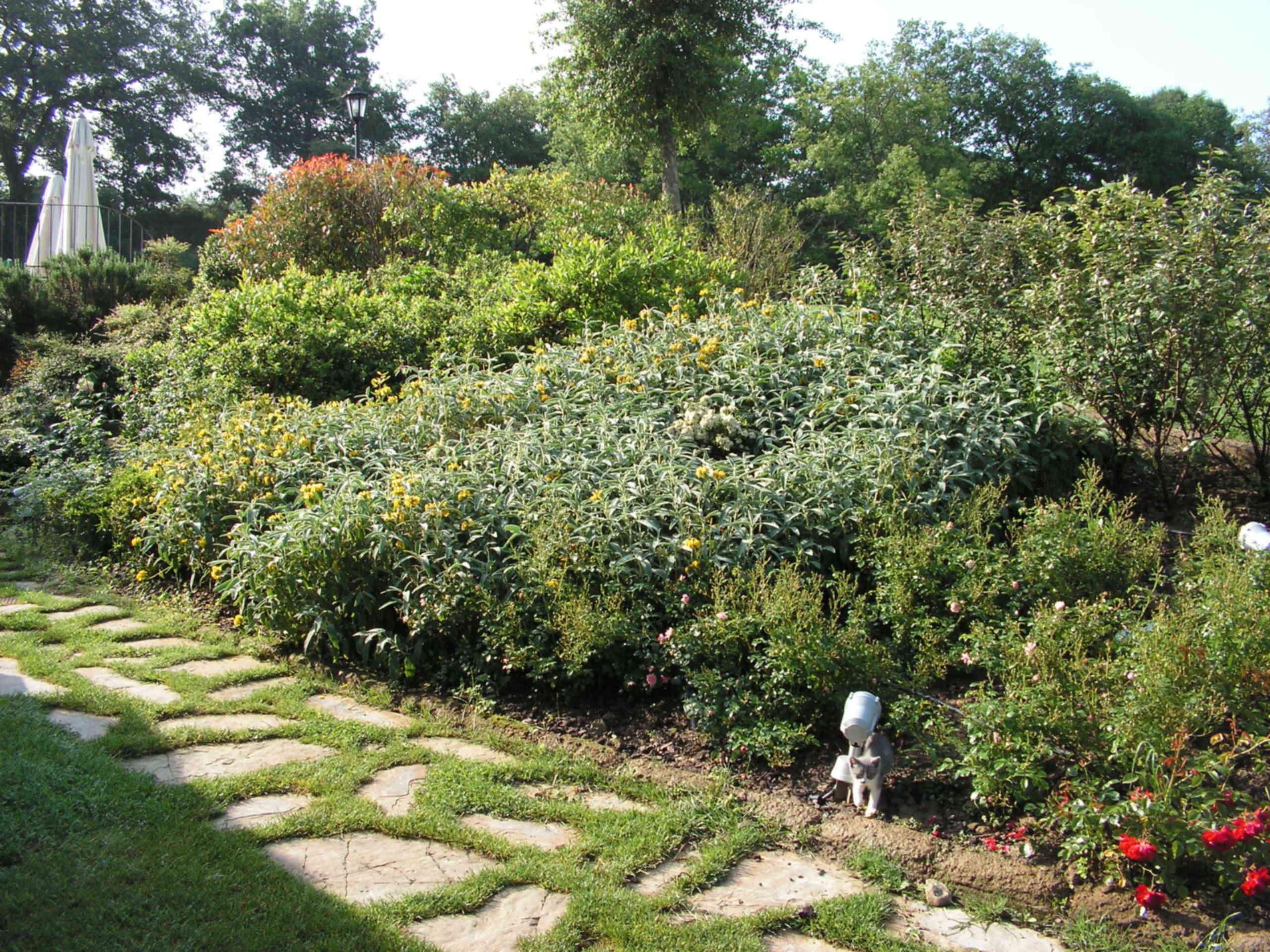 Giardini piccoli che sia coperta con plexiglass o for Piccoli piani di coperta