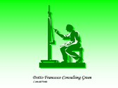 Logo Dotto Francesco Consulting Green
