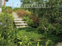 Verde profilo for Donare un giardiniere