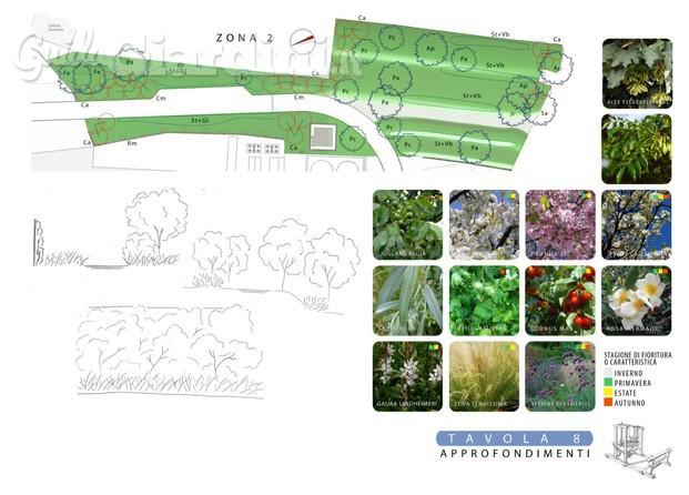 Immagini di Plantula - GuidaGiardini.it