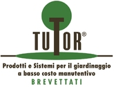 Tutor International Srl