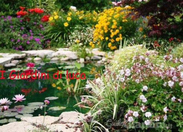 I giardini di luca for Laghetto i giardini