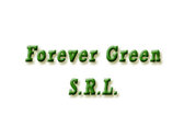 Forever Green S.R.L.