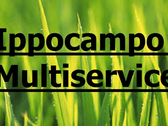 Ippocampo Multiservice