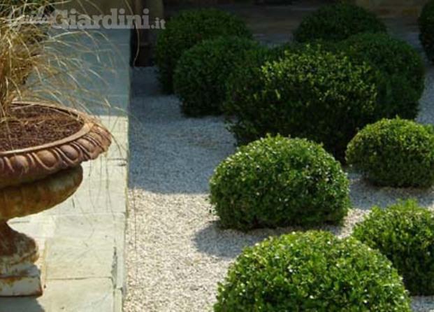 Studio raspanti architettura del giardino e del paesaggio - Giardino di campagna ...