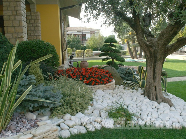 Giardineria for Idee x piccoli giardini
