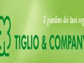 Tiglio And Company
