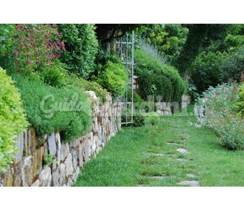 Progettazione e realizzazione giardini for Realizzazione giardini firenze